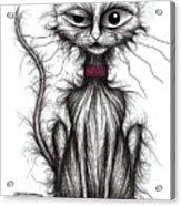 Kipper Kitty Acrylic Print