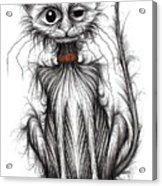 Kipper The Kitty Acrylic Print