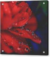 Kisses In The Rain Acrylic Print