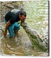 Kissing A Crocodile Acrylic Print