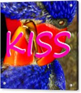 Kissing Birds Spca Acrylic Print