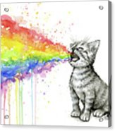 Kitten Tastes The Rainbow Acrylic Print