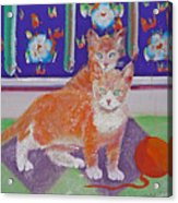Kittens With Wild Wool Acrylic Print