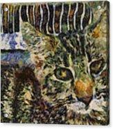 Kitty Vangoghed Acrylic Print