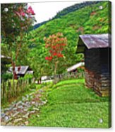 Kiwi Village Of Papua Acrylic Print