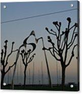 Knobby Trees Acrylic Print