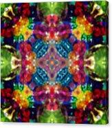 Knots Xvii Acrylic Print