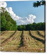 Knox Farm 11625 Acrylic Print