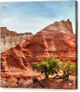 Kodachrome Park Colorful Desert Beauty In Spring. Acrylic Print