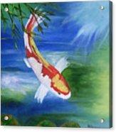 Kohaku Koi Fish 2 Acrylic Print