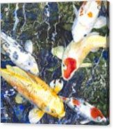 Koi Deep Blue Acrylic Print