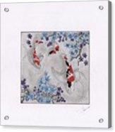 Koi In The Shade Acrylic Print