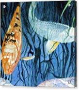 Kooky Koi Acrylic Print