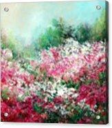 Kukenhof Rhododendrums Acrylic Print