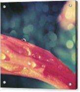 La Goutte D'eau Acrylic Print