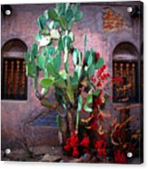 La Hacienda In Old Tuscon Az Acrylic Print by Susanne Van Hulst