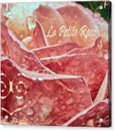 La Petite Rose Acrylic Print