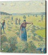 The Harvesting Of Hay Eragny  Acrylic Print