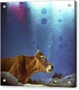 La Vache Numerique Acrylic Print