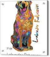 Labrador Retriever Pop Art Acrylic Print