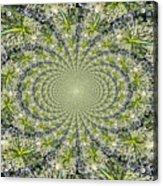 Lacey Kaleidoscope Acrylic Print