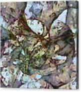 Ladderlike Taste  Id 16098-014755-31540 Acrylic Print