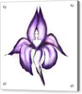 Lady Iris Acrylic Print
