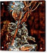Lady Of The Dance II  Acrylic Print