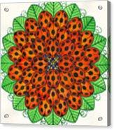 Ladybug Design Acrylic Print