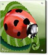 Ladybug On Leaf Acrylic Print