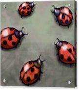 Ladybugs Acrylic Print