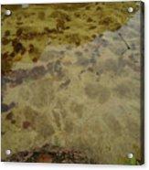 Lago Transparente Acrylic Print