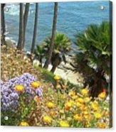 Laguna Beach, Southern California 12 Acrylic Print