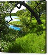 Laguna De Santa Rosa Acrylic Print
