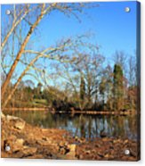 Lake And Trees In Early Spring Acrylic Print