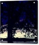 Lake At Dusk Acrylic Print