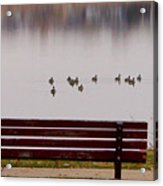 Lake Bench Acrylic Print