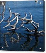 Lake Birds Acrylic Print