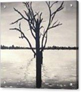 'lake Bonney' Acrylic Print