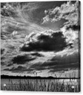 Lake Dora Black And White Acrylic Print