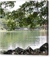 Lake Ella, Tallahassee Acrylic Print