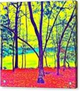Lake Eyed Acrylic Print