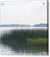 Lake Grasses Acrylic Print