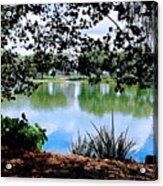 Lake Hamilton Acrylic Print
