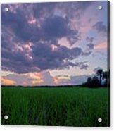 Lake Harney Sunset Acrylic Print