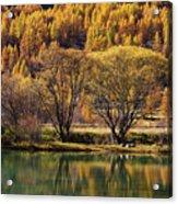 Lake In Autumn - 3 - French Alps Acrylic Print