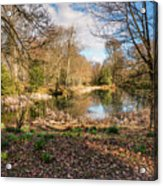 Lake In Early Springtime Woodland Acrylic Print