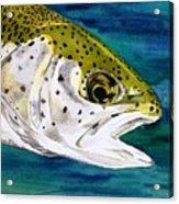 Lake Leopard Acrylic Print