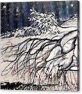 Lake Louise In Winter Acrylic Print
