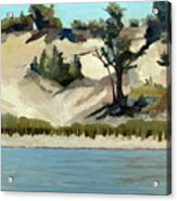 Lake Michigan Dune With Trees And Beach Grass Acrylic Print by Michelle Calkins